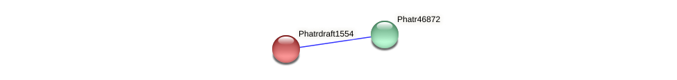 Phatrdraft1554 protein (Phaeodactylum tricornutum) - STRING interaction network