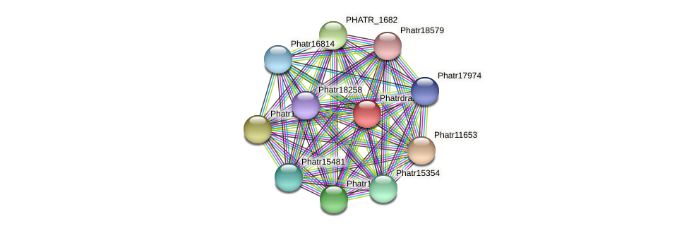 Phatrdraft1637 protein (Phaeodactylum tricornutum) - STRING interaction network