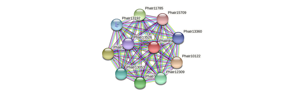 Phatrdraft1638 protein (Phaeodactylum tricornutum) - STRING interaction network