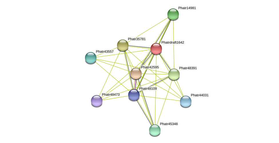 Phatrdraft1642 protein (Phaeodactylum tricornutum) - STRING interaction network