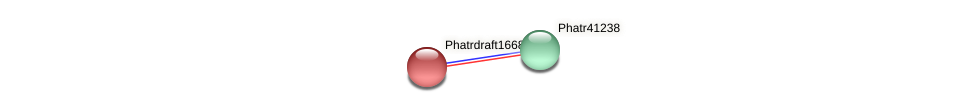 Phatrdraft1668 protein (Phaeodactylum tricornutum) - STRING interaction network