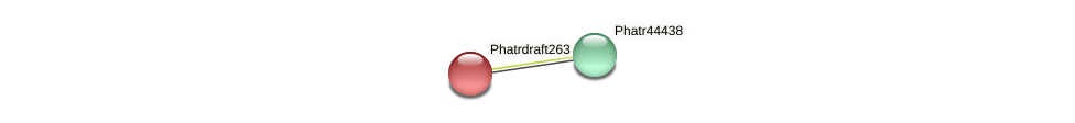 Phatrdraft263 protein (Phaeodactylum tricornutum) - STRING interaction network