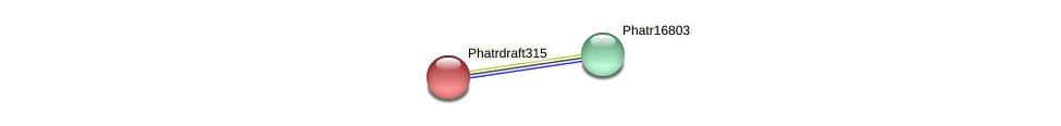 Phatrdraft315 protein (Phaeodactylum tricornutum) - STRING interaction network