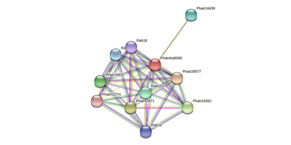 Phatrdraft590 protein (Phaeodactylum tricornutum) - STRING interaction network