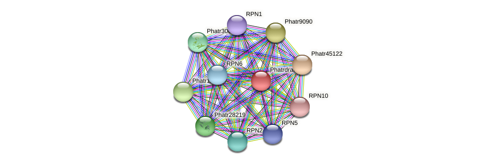 Phatrdraft706 protein (Phaeodactylum tricornutum) - STRING interaction network