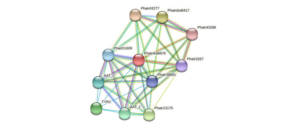 Phatrdraft870 protein (Phaeodactylum tricornutum) - STRING interaction network