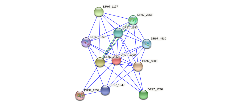 DR97_1000 protein (Pseudomonas aeruginosa) - STRING interaction network