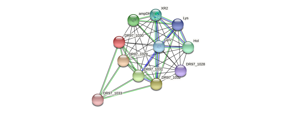 DR97_1030 protein (Pseudomonas aeruginosa) - STRING interaction network