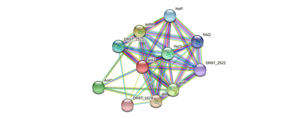 argT3 protein (Pseudomonas aeruginosa) - STRING interaction network