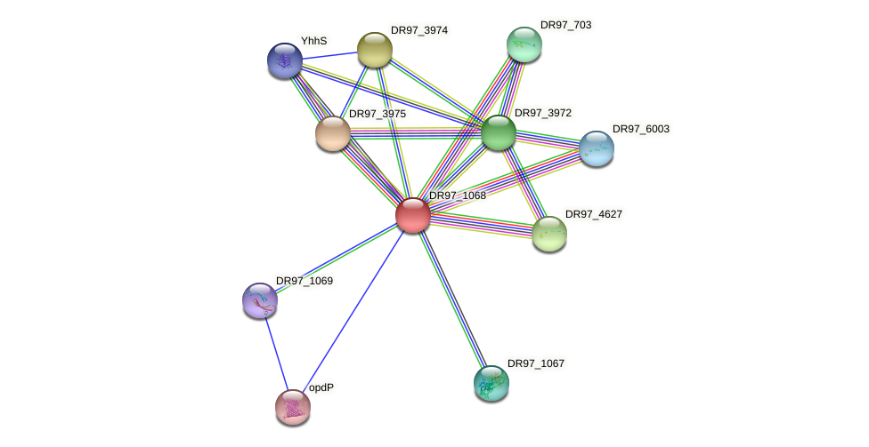 DR97_1068 protein (Pseudomonas aeruginosa) - STRING interaction network