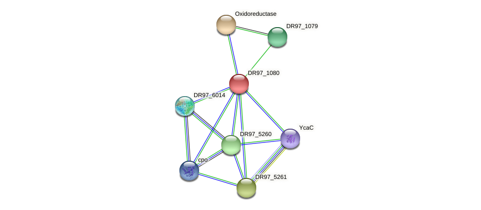 DR97_1080 protein (Pseudomonas aeruginosa) - STRING interaction network