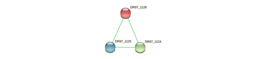 DR97_1126 protein (Pseudomonas aeruginosa) - STRING interaction network