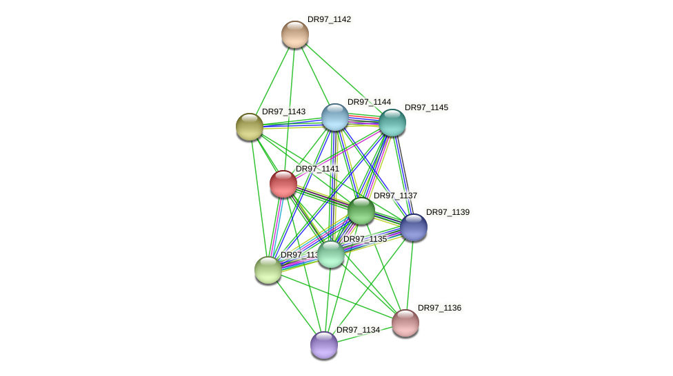 DR97_1141 protein (Pseudomonas aeruginosa) - STRING interaction network