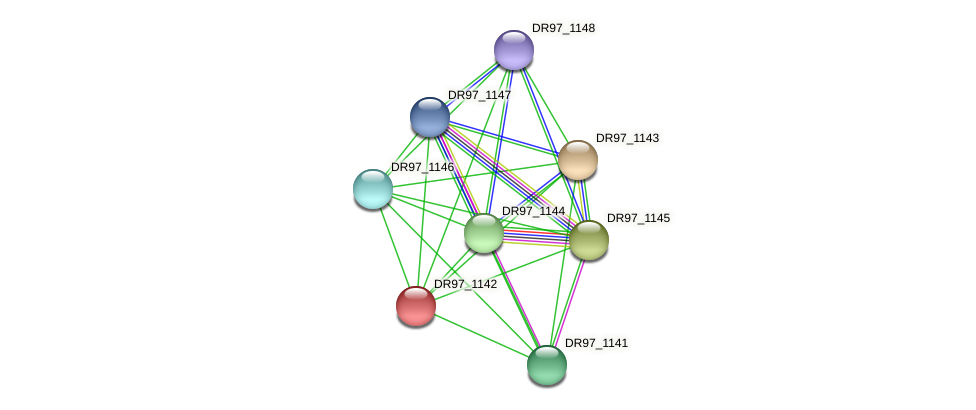 DR97_1142 protein (Pseudomonas aeruginosa) - STRING interaction network