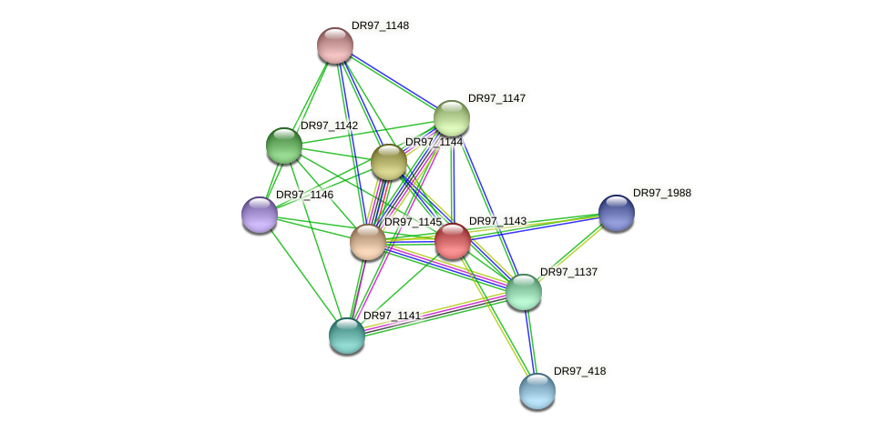 PACL_0296 protein (Pseudomonas aeruginosa) - STRING interaction network
