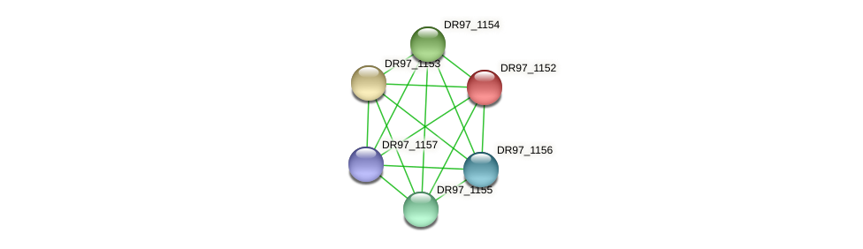 DR97_1152 protein (Pseudomonas aeruginosa) - STRING interaction network
