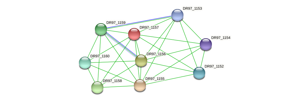 DR97_1157 protein (Pseudomonas aeruginosa) - STRING interaction network