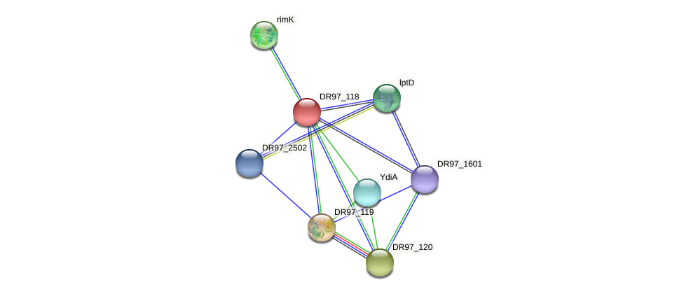 DR97_118 protein (Pseudomonas aeruginosa) - STRING interaction network