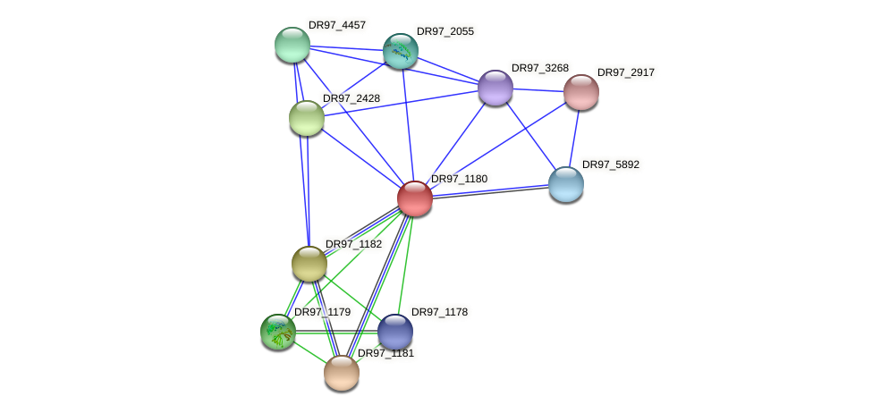 DR97_1180 protein (Pseudomonas aeruginosa) - STRING interaction network