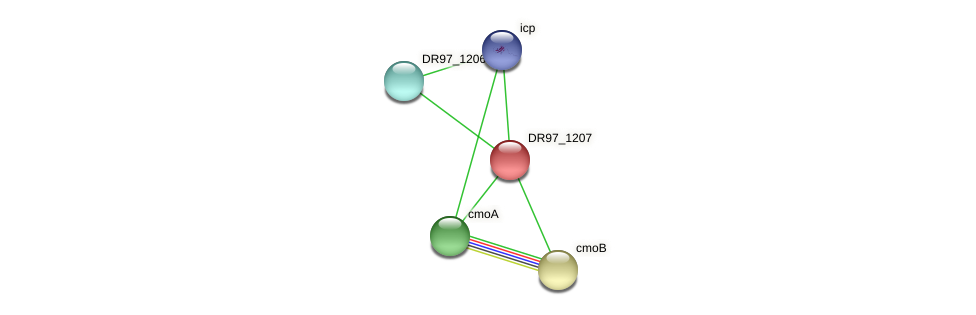 DR97_1207 protein (Pseudomonas aeruginosa) - STRING interaction network
