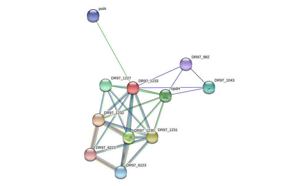 DR97_1233 protein (Pseudomonas aeruginosa) - STRING interaction network