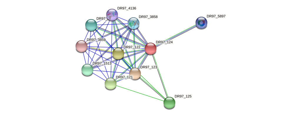 DR97_124 protein (Pseudomonas aeruginosa) - STRING interaction network