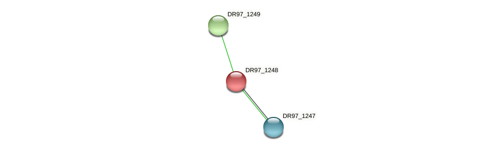 DR97_1248 protein (Pseudomonas aeruginosa) - STRING interaction network