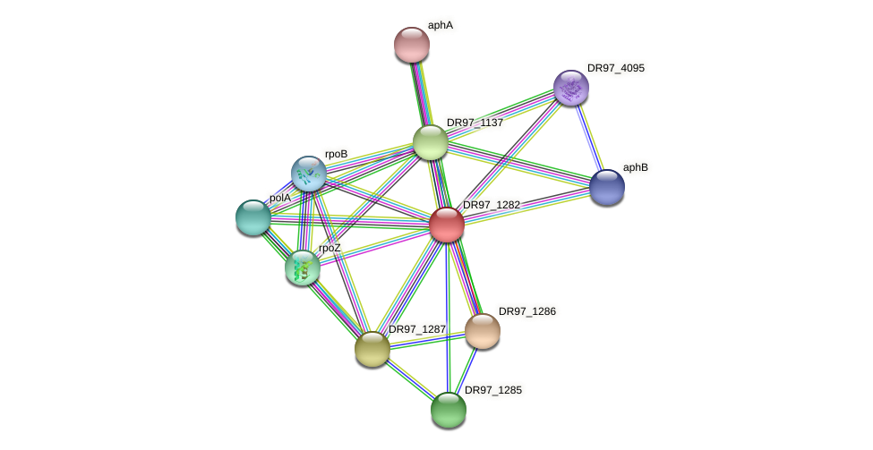 DR97_1282 protein (Pseudomonas aeruginosa) - STRING interaction network