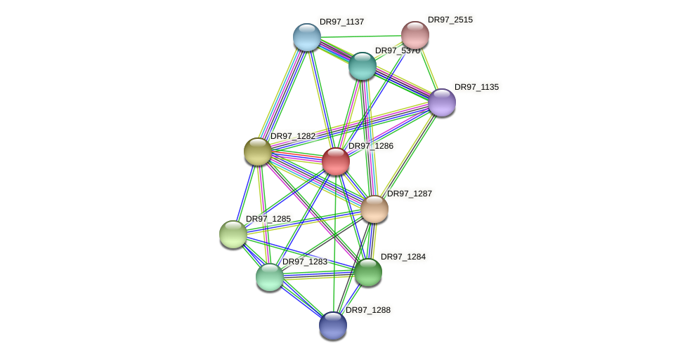 DR97_1286 protein (Pseudomonas aeruginosa) - STRING interaction network