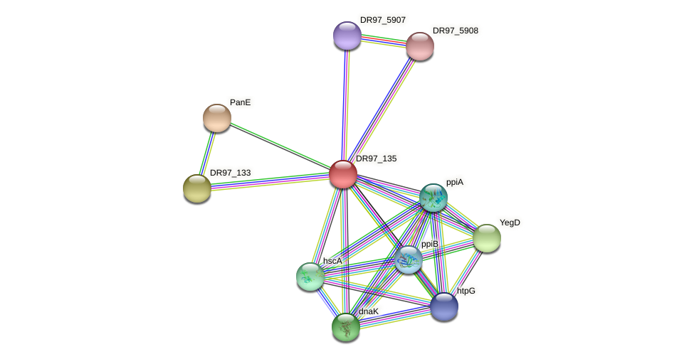 DR97_135 protein (Pseudomonas aeruginosa) - STRING interaction network