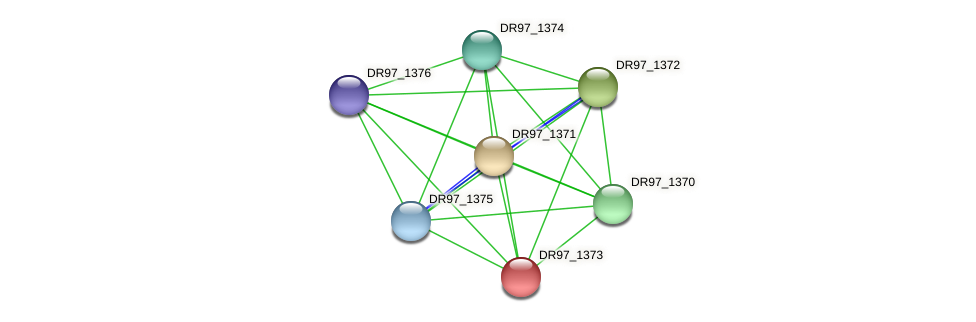 DR97_1373 protein (Pseudomonas aeruginosa) - STRING interaction network
