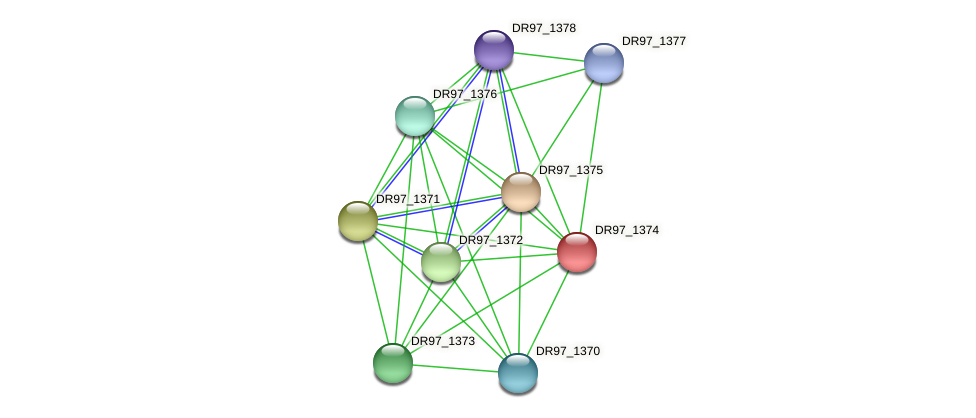 DR97_1374 protein (Pseudomonas aeruginosa) - STRING interaction network