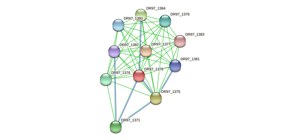 DR97_1378 protein (Pseudomonas aeruginosa) - STRING interaction network