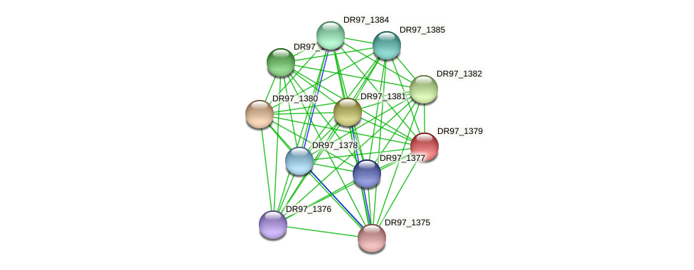 DR97_1379 protein (Pseudomonas aeruginosa) - STRING interaction network