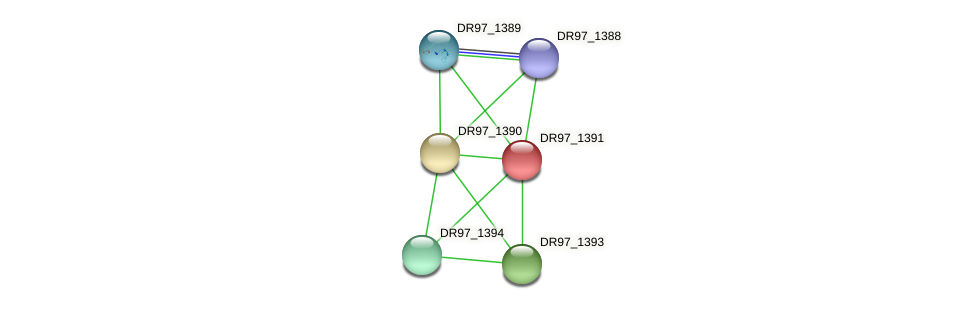 DR97_1391 protein (Pseudomonas aeruginosa) - STRING interaction network