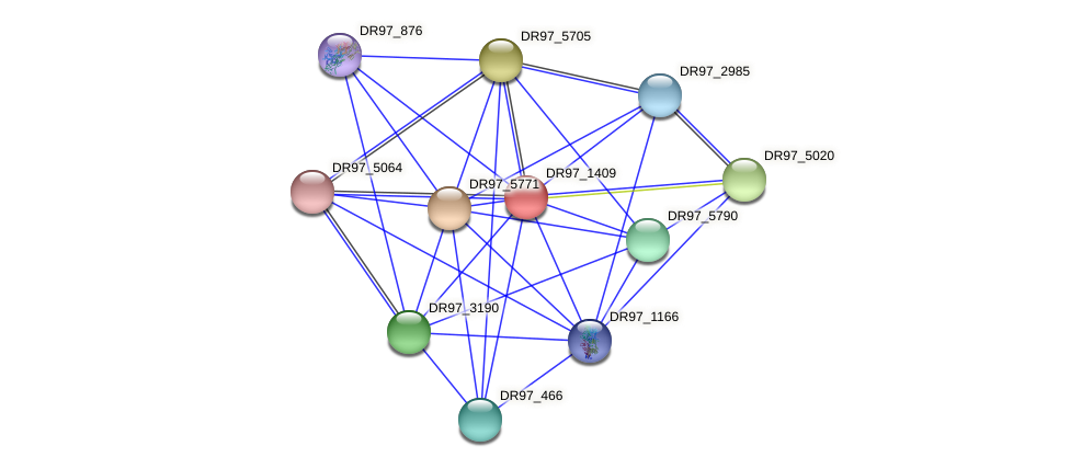 DR97_1409 protein (Pseudomonas aeruginosa) - STRING interaction network
