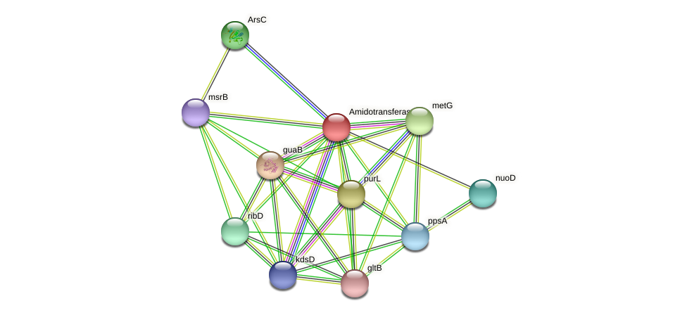 DR97_144 protein (Pseudomonas aeruginosa) - STRING interaction network