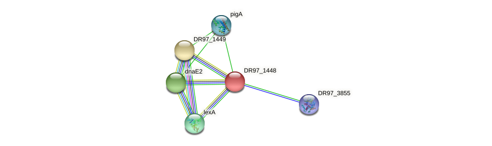 DR97_1448 protein (Pseudomonas aeruginosa) - STRING interaction network