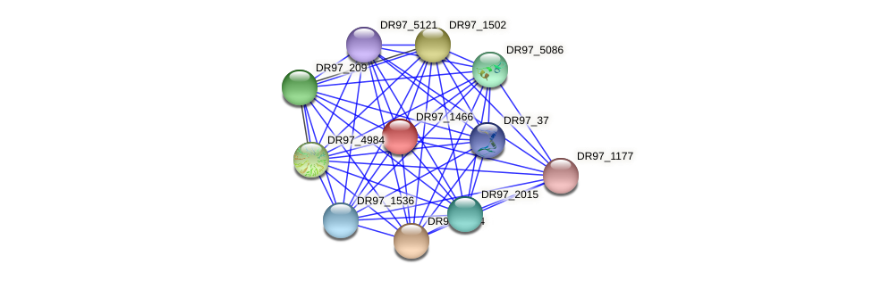 DR97_1466 protein (Pseudomonas aeruginosa) - STRING interaction network