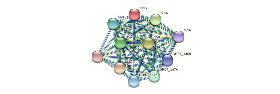 DR97_1472 protein (Pseudomonas aeruginosa) - STRING interaction network