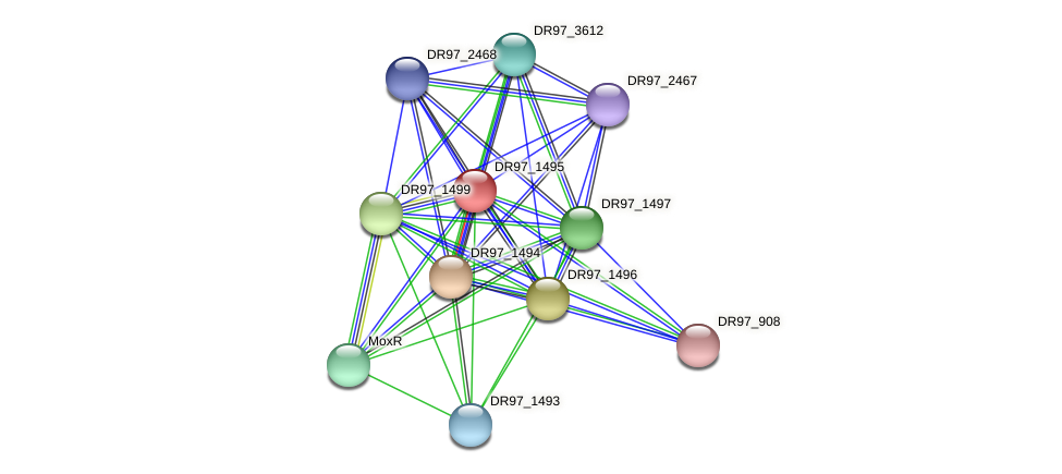 DR97_1495 protein (Pseudomonas aeruginosa) - STRING interaction network