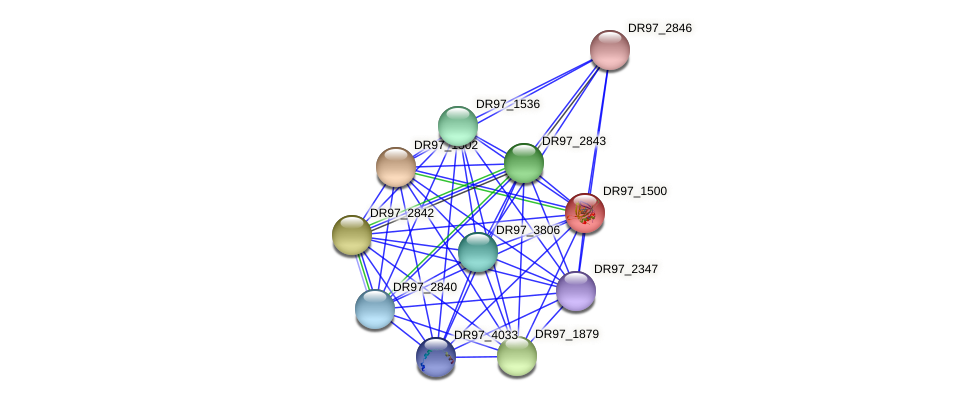 DR97_1500 protein (Pseudomonas aeruginosa) - STRING interaction network