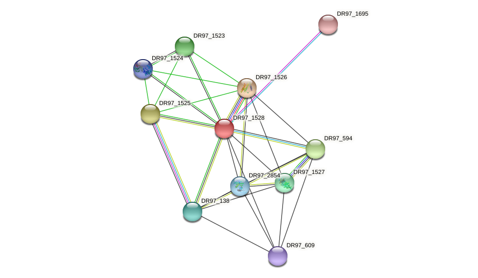 DR97_1528 protein (Pseudomonas aeruginosa) - STRING interaction network
