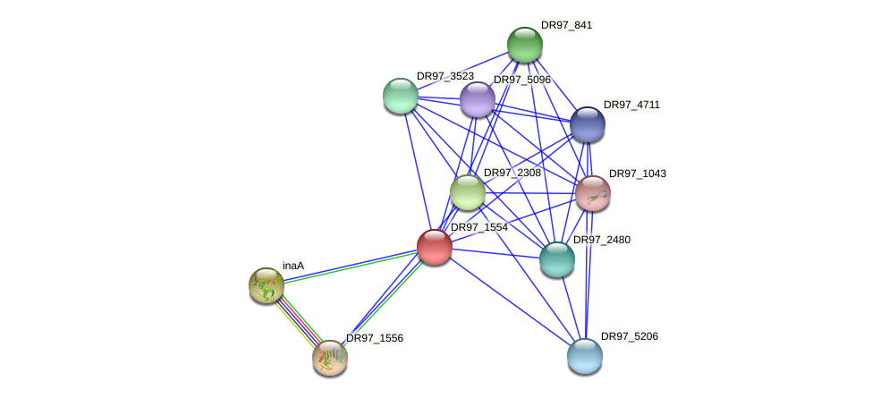 DR97_1554 protein (Pseudomonas aeruginosa) - STRING interaction network