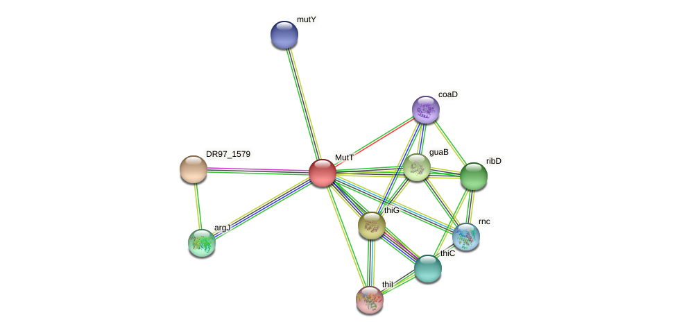 DR97_1578 protein (Pseudomonas aeruginosa) - STRING interaction network