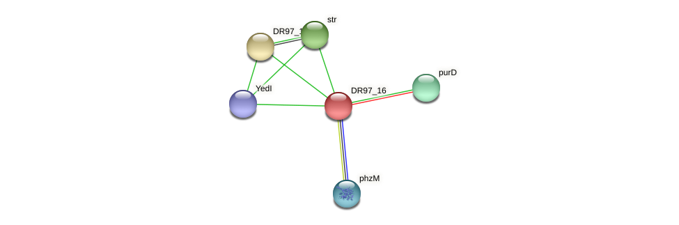 DR97_16 protein (Pseudomonas aeruginosa) - STRING interaction network