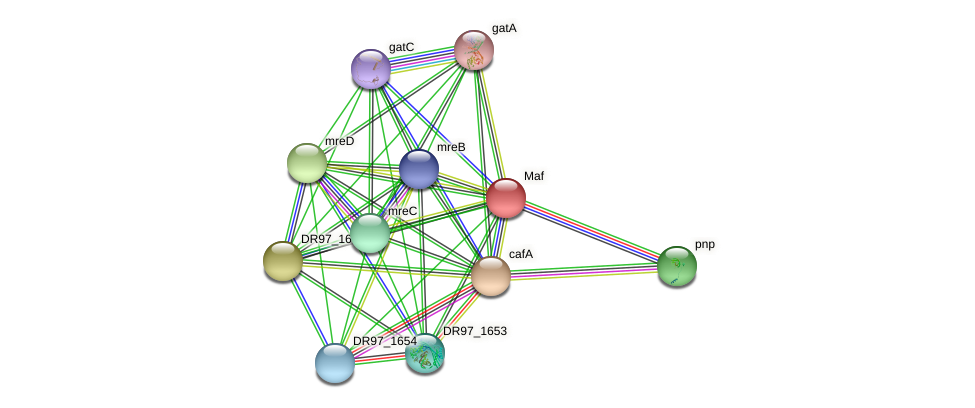 DR97_1657 protein (Pseudomonas aeruginosa) - STRING interaction network
