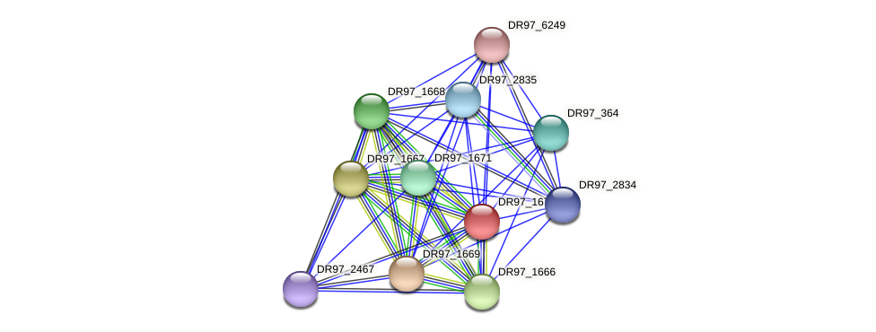 DR97_1670 protein (Pseudomonas aeruginosa) - STRING interaction network