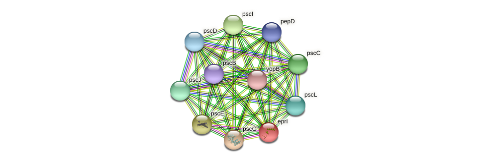 eprI protein (Pseudomonas aeruginosa) - STRING interaction network