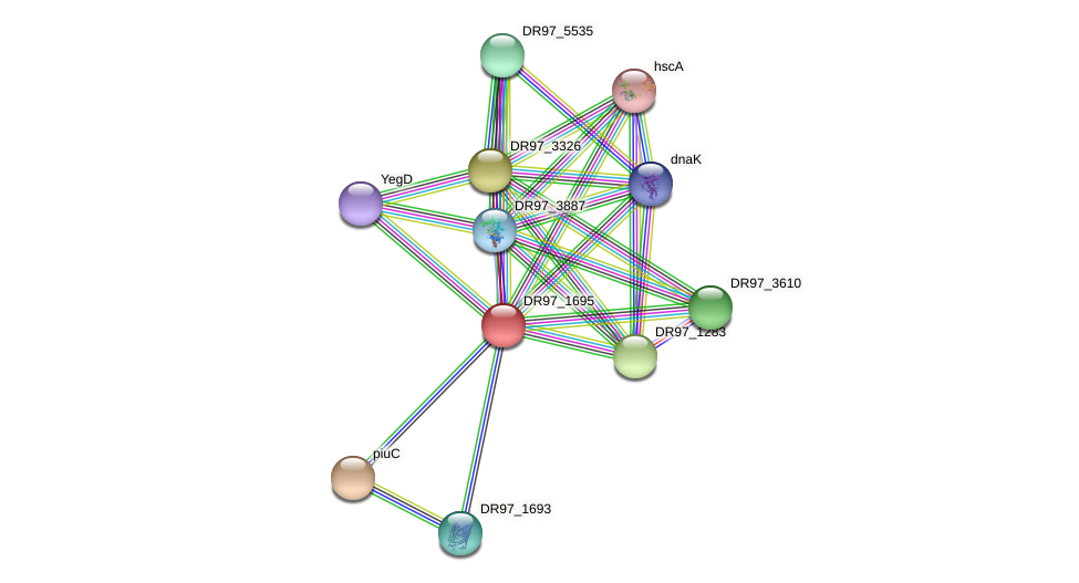 DR97_1695 protein (Pseudomonas aeruginosa) - STRING interaction network